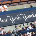 Spielerbank der New Yorker Yankees von oben