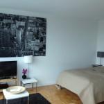 Wohn- und Schlafbereich - Studio Suite - 70 Green Street - Dharma Home Suites