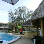 Pool-Anlage mit Frühstücksbar
