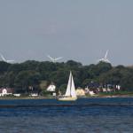Kleines gelbes Segelboot fährt über die Flensburger Förde vor der Küste Dänemarks