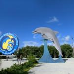 Parkplatz Dolphin Research Center in Marathon mit großer Delfin-Skulptur