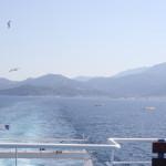 Möwen verfolgen die Thassos-Fährschiffe