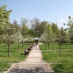 Weg zum Halbmondhäuschen im Schlosspark von Bad Mergentheim