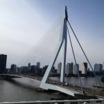 Blick auf die Erasmusbrücke von der Terrasse der Hotelbar